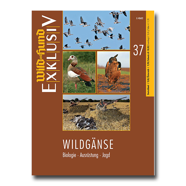 WILD UND HUND Exklusiv Nr. 37: Wildgänse im Pareyshop