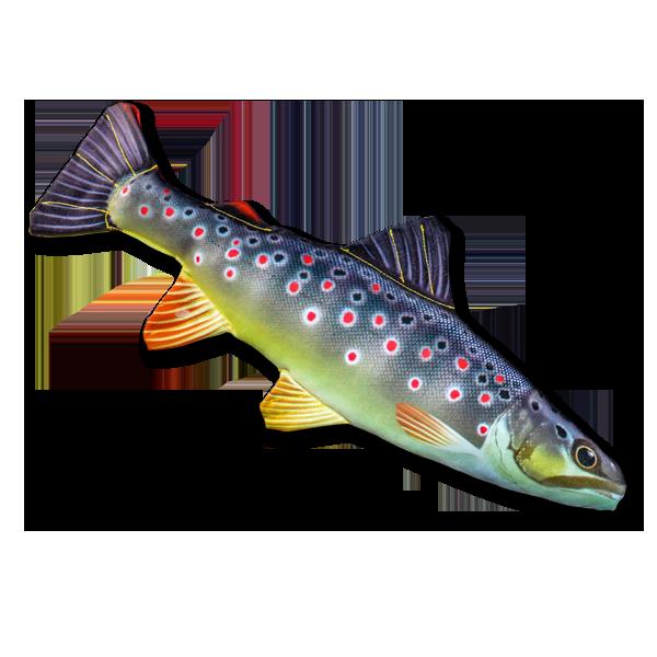Mini-Stofffisch Bachforelle (35 cm) im Pareyshop