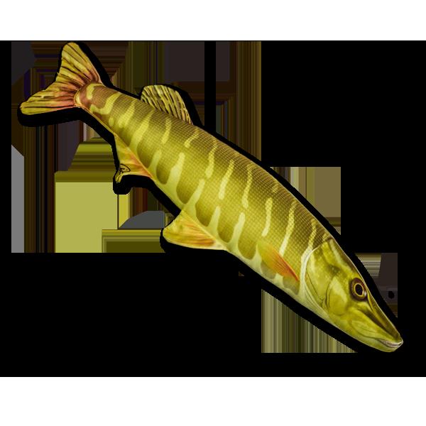 Mini-Stofffisch Hecht (45 cm) im Pareyshop