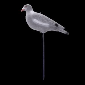 Lockvögel Taube 33 cm im Pareyshop