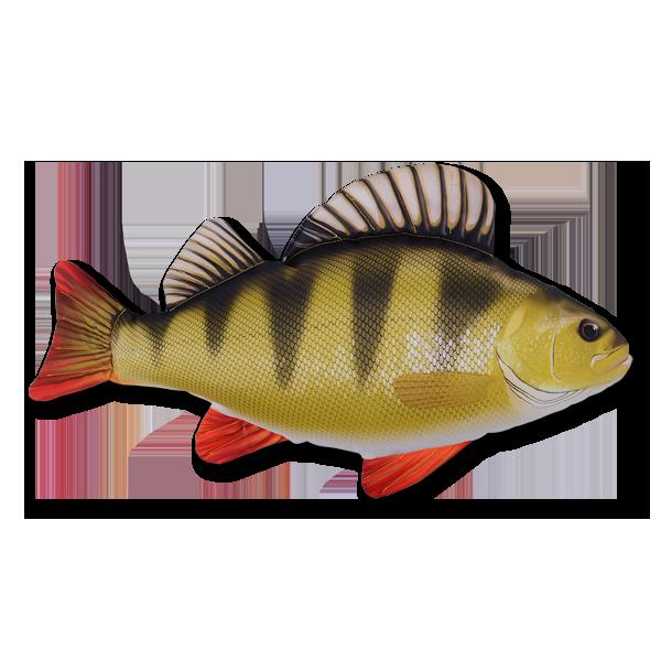 Stofffisch Barsch (50 cm) im Pareyshop