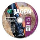Auf Drehhörner in Südafrika (Teil 1) – JWW DVD Nr. 47