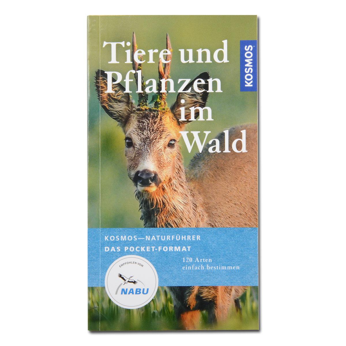 Tiere und Pflanzen im Wald (Pocket-Format) im Pareyshop