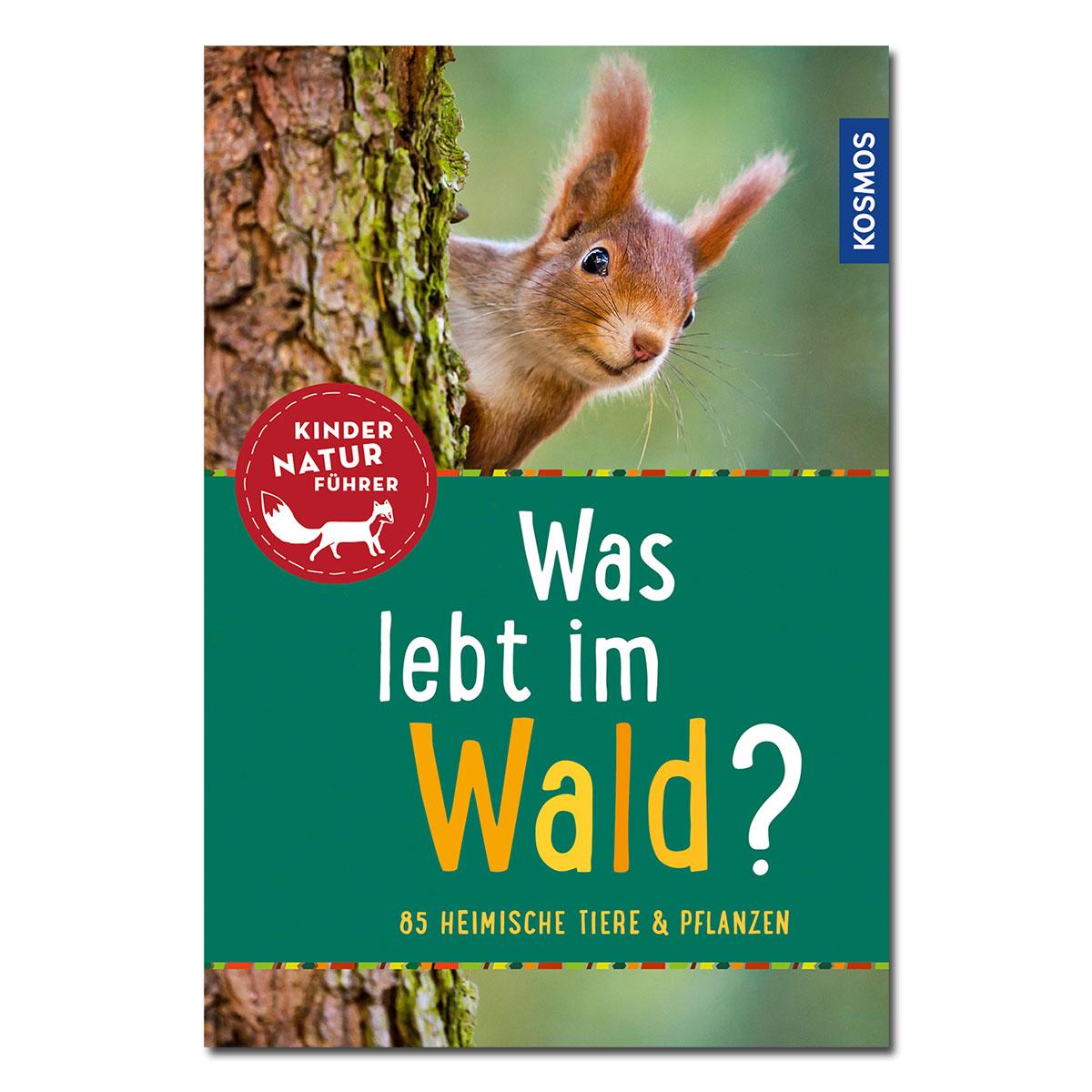 Kinder-Naturführer: Was lebt im Wald? im Pareyshop