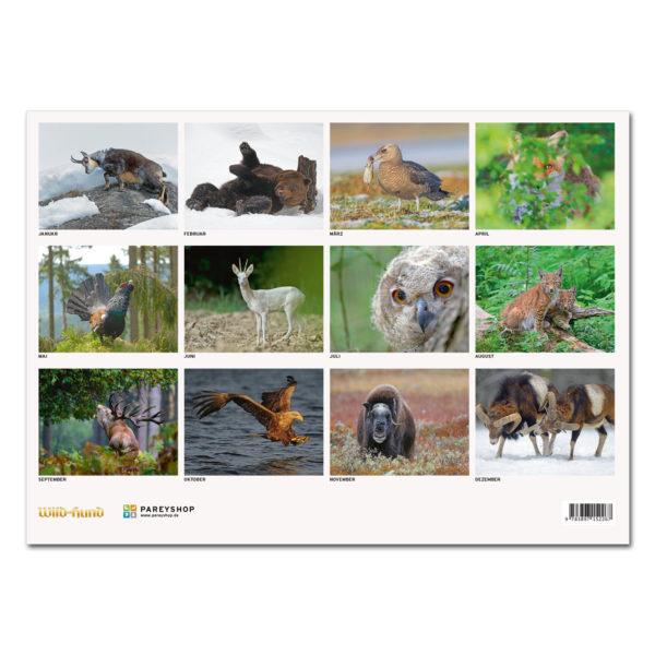 Faszination Natur Kalender 2019 im Pareyshop