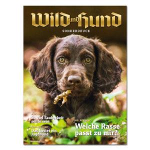 WILD UND HUND - Welpen - Welche Rasse passt zu mir im Pareyshop