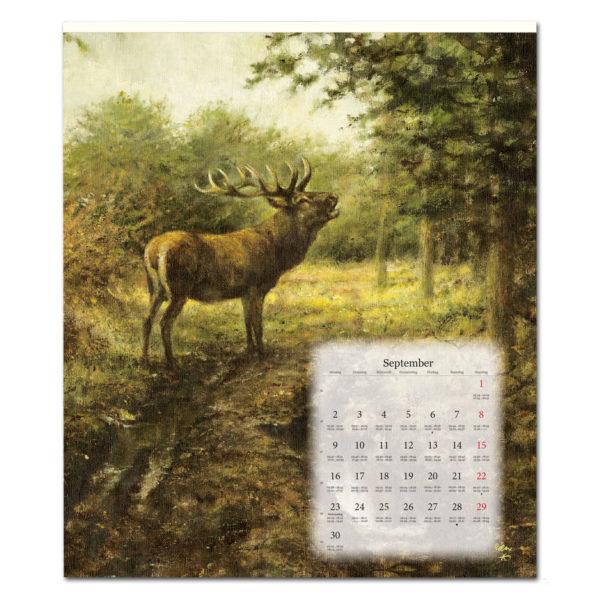 Rien Poortvliets großer Tierkalender 2019 im Pareyshop