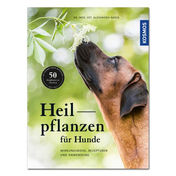 Heilpflanzen für Hunde im Pareyshop