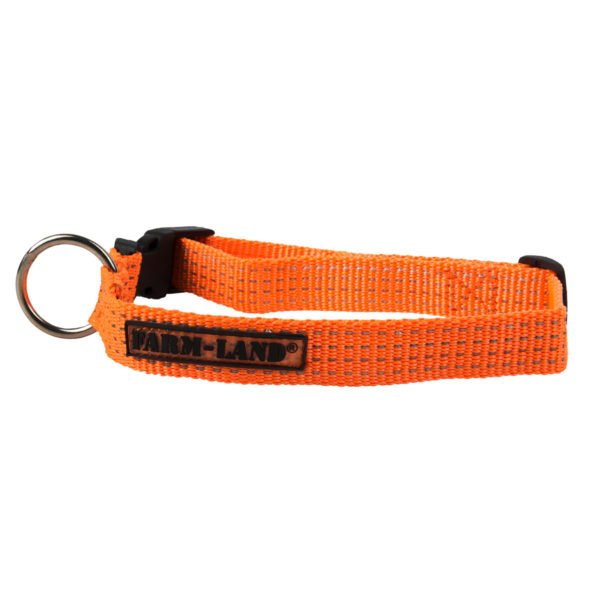 Farm-Land Halsband Orange im Pareyshop