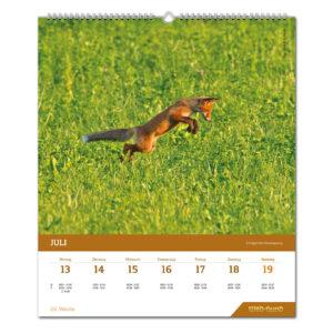 WILD UND HUND Edition: Jagdkalender Wandvariante 2020 im Pareyshop