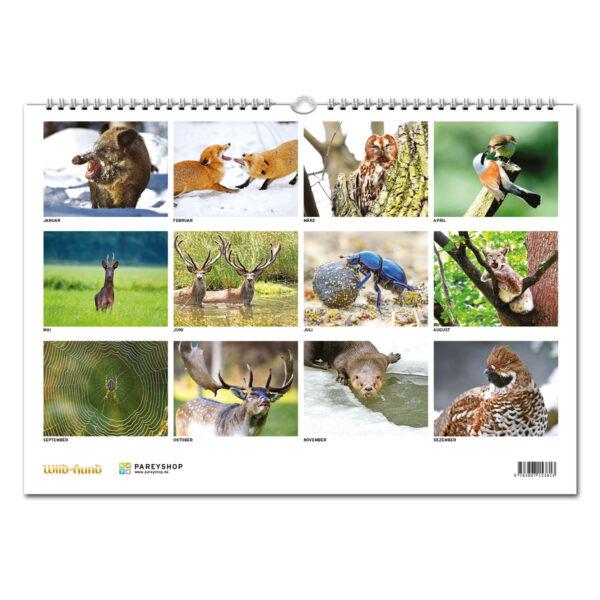 WILD UND HUND Edition: Faszination Natur Kalender 2020 im Pareyshop