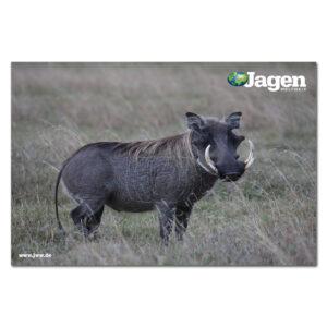 JAGEN WELTWEIT Edition: Anschuss-Scheibe Warzenschwein im Pareyshop
