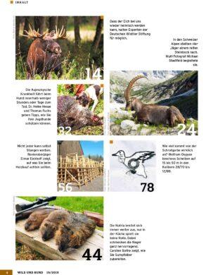 Wild und Hund 2019/19 im Pareyshop