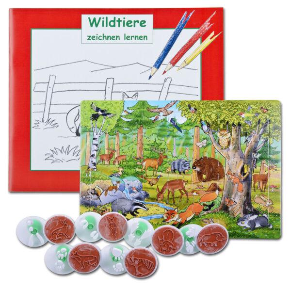 Set: Kids Wald entdecken im Pareyshop
