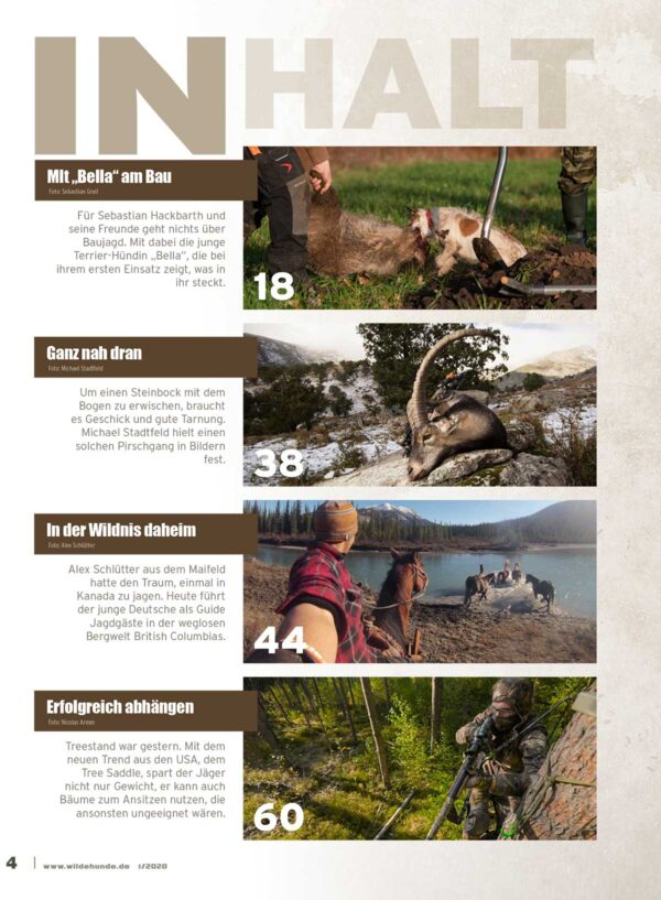 Wilde Hunde 2020/01 im Pareyshop