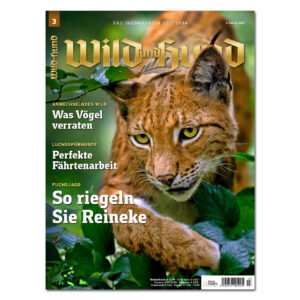 Wild und Hund 2020/03 im Pareyshop