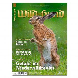 Wild und Hund 2020/07 im Pareyshop