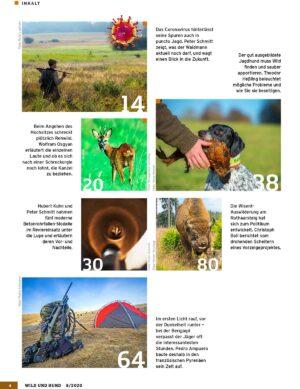 Wild und Hund 2020/08 im Pareyshop