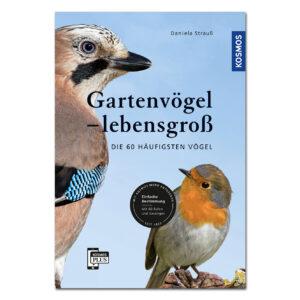 Gartenvögel lebensgroß im Pareyshop