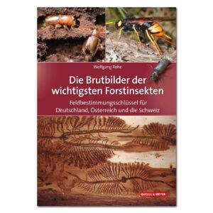 Die Brutbilder der wichtigsten Forstinsekten im Pareyshop