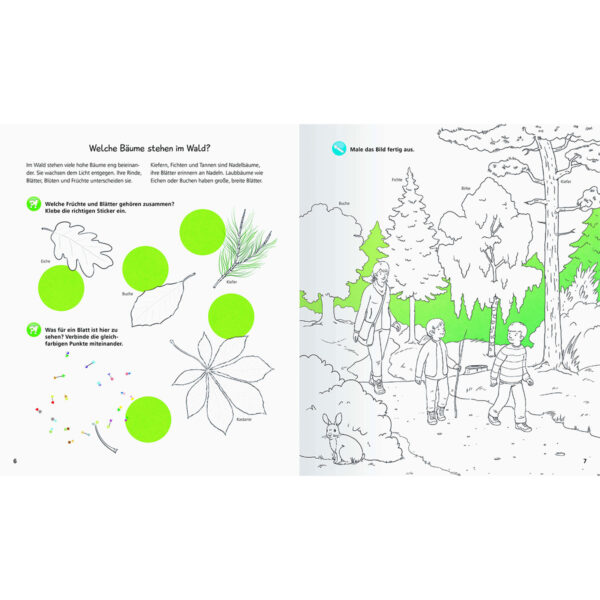 Aktiv-Heft: Wald im Pareyshop