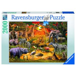 Puzzle: Versammlung am Wasserloch im Pareyshop