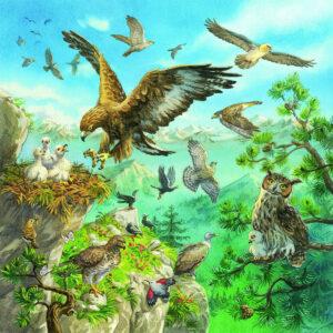 Puzzle: Tiere in ihren Lebensräumen im Pareyshop