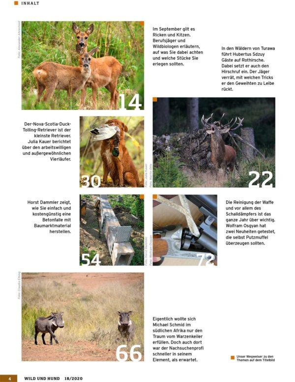 Wild und Hund 2020/18 im Pareyshop