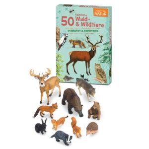 Set: Waldtiere für Kinder im Pareyshop
