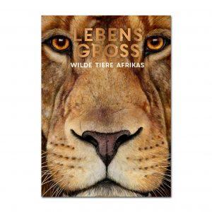 Lebensgroß – Wilde Tiere Afrikas im Pareyshop