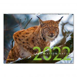 WILD UND HUND Edition: Faszination Natur Kalender 2022 im Pareyshop
